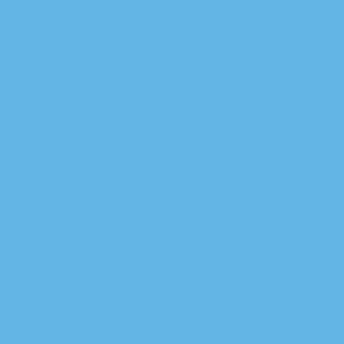 LIGHT BLUE<br /> -<br /> PANTONE 2915 C