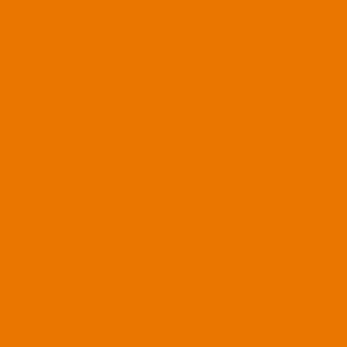ORANGE<br /> -<br /> PANTONE 716 C