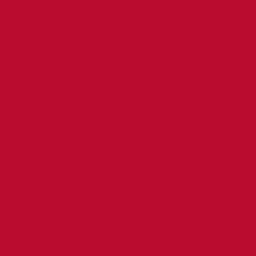 RED<br /> -<br /> PANTONE 200 C